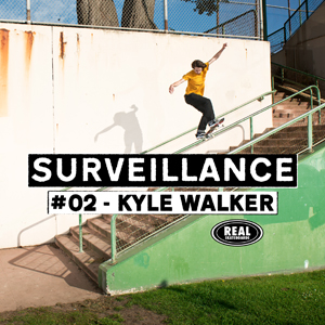 rs-walker-surveillance-300